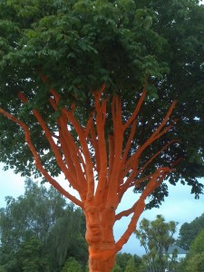 An embalmed tree in Christchurch