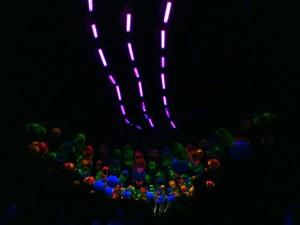 Ultra violet lights, Pukekura Park