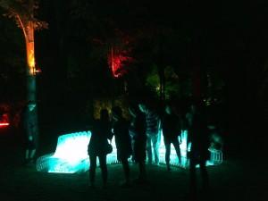 Light sculpture in New Plymouth's Pukekura Park